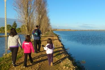 Invierno en el Delta del Ebro